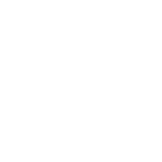 Geo caching icon